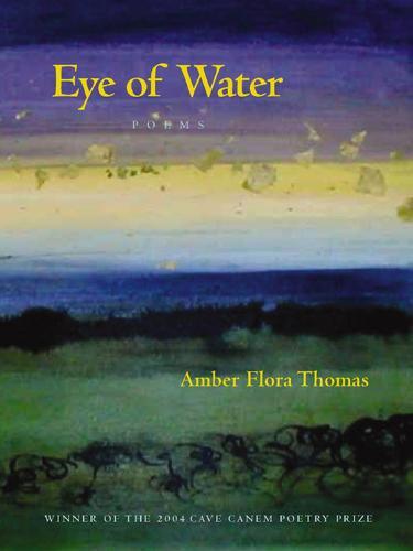 Eye of Water: Poems - Pitt Poetry Series (Paperback)