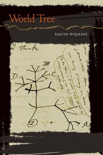 World Tree (Paperback)
