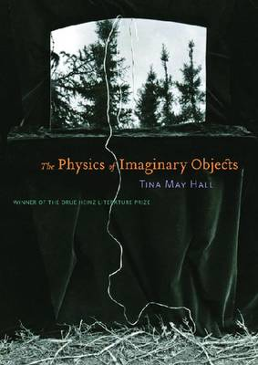 The Physics of Imaginary Objects (Paperback)