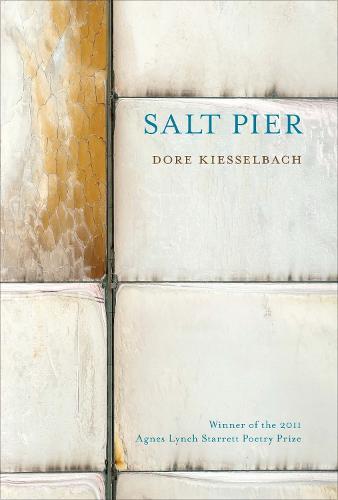 Salt Pier (Paperback)