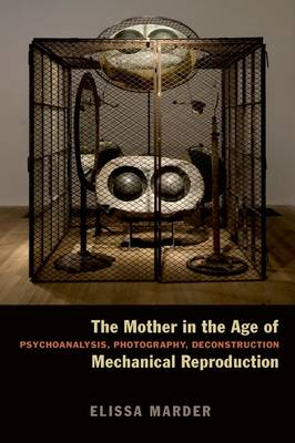 The Mother in the Age of Mechanical Reproduction: Psychoanalysis, Photography, Deconstruction (Hardback)