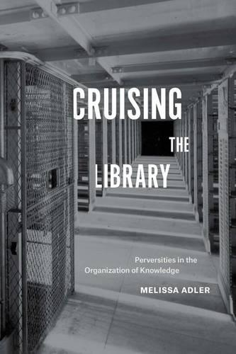 Cruising the Library: Perversities in the Organization of Knowledge (Paperback)