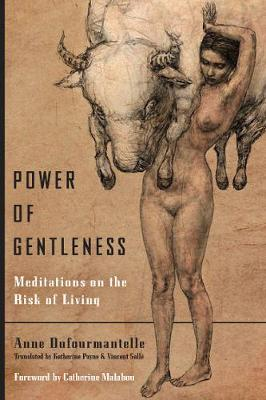 Power of Gentleness: Meditations on the Risk of Living (Paperback)