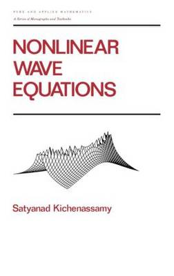 Nonlinear Wave Equations - Chapman & Hall/CRC Pure and Applied Mathematics 194 (Hardback)