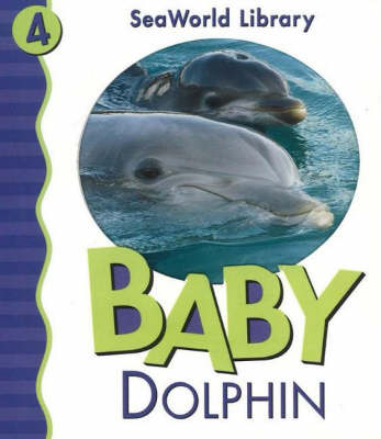 Baby Dolphin (Board book)