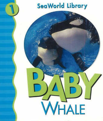 Baby Whale - SeaWorld Library (Board book)