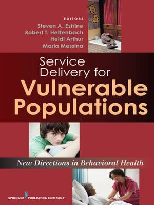 New Directions in Human Services Delivery: Strategies for Vulnerable Populations (Hardback)