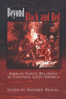 Beyond Black and Red: African-Native Relations in Colonial Latin America (Hardback)