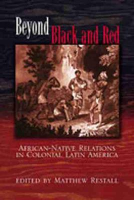 Beyond Black and Red: African-Native Relations in Colonial Latin America (Paperback)