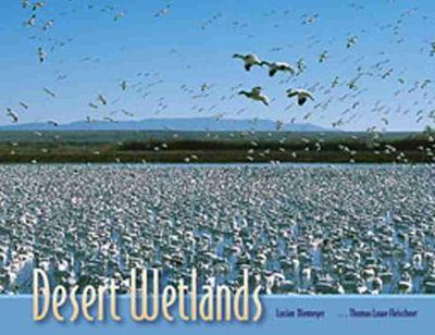Desert Wetlands (Paperback)