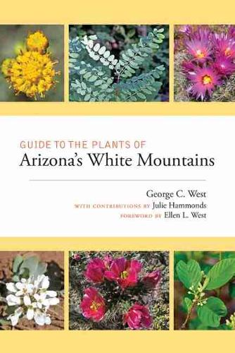 Guide to the Plants of Arizona's White Mountains (Paperback)
