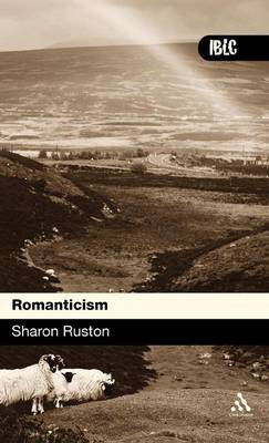 Romanticism - Introductions to British Literature and Culture S. (Hardback)