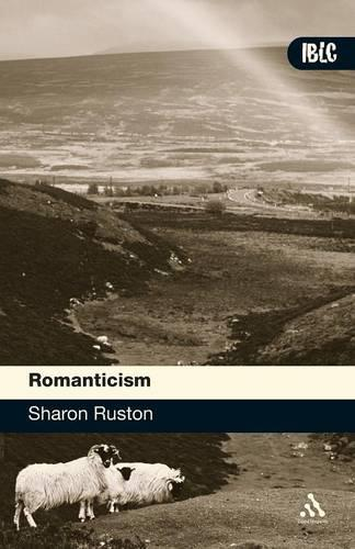 Romanticism - Introductions to British Literature and Culture S. (Paperback)