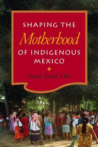 Shaping the Motherhood of Indigenous Mexico (Paperback)