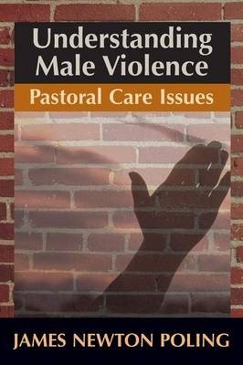 Understanding Male Violence: Pastoral Care Issues (Paperback)