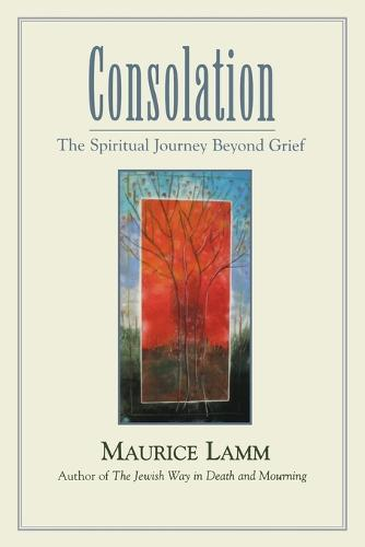 Consolation: The Spiritual Journey Beyond Grief (Paperback)