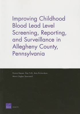 Improving Childhood Blood Lead Level Screening, Reporting, and Surveillance in Allegheny County, Pennsylvania (Paperback)