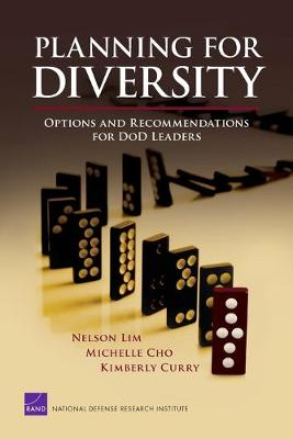 Planning for Diversity: Options and Recommendations for DoD Leaders (Paperback)
