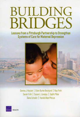 Building Bridges: Lessons from a Pittsburgh Partnership to Strengthen Systems of Care for Maternal Depression (Paperback)