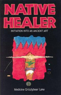 Native Healer: Initiation into an Ancient Art (Paperback)
