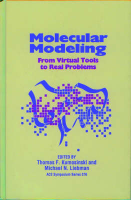 Molecular Modeling: From Virtual Tools to Real Problems - ACS Symposium Series 576 (Hardback)