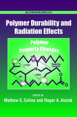 Polymer Durability and Radiation Effects - ACS Symposium Series (Hardback)
