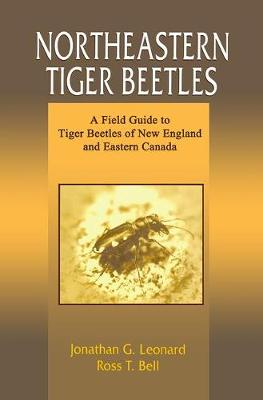 Northeastern Tiger Beetles: A Field Guide to Tiger Beetles of New England and Eastern Canada (Paperback)