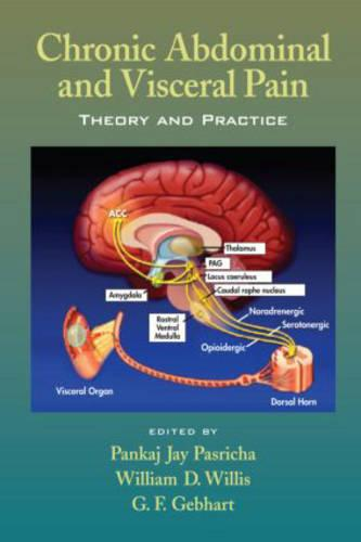 Chronic Abdominal and Visceral Pain: Theory and Practice (Hardback)