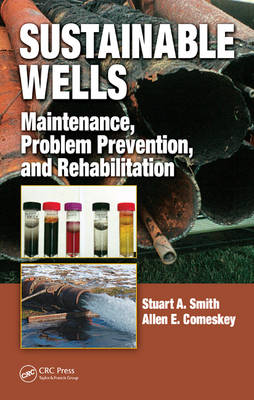 Sustainable Wells: Maintenance, Problem Prevention, and Rehabilitation (Hardback)