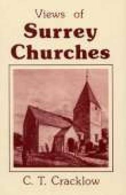 View of Surrey Churches (Paperback)