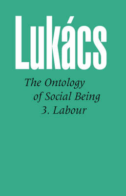 Ontology of Social Being: Pt. 3: Labour (Paperback)