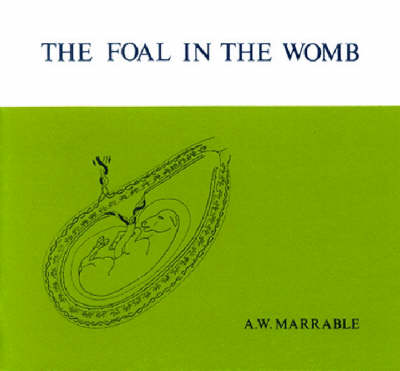 Foal in the Womb (Paperback)