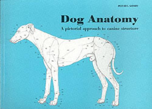 Dog Anatomy: A Pictorial Approach to Canine Structure (Paperback)