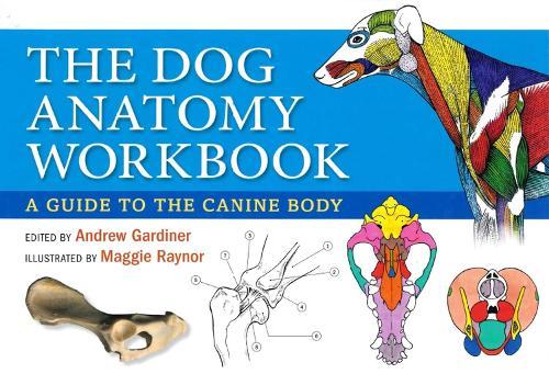 Dog Anatomy Workbook: A Guide to the Canine Body (Spiral bound)