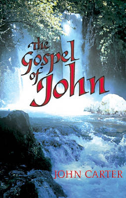 The Gospel of John (Hardback)