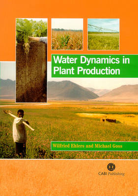 Water Dynamics in Plant Production (Hardback)