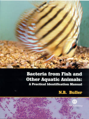 Bacteria from Fish and Other Aquatic Animals: A Practical Identification Manual (Spiral bound)