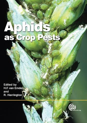 Aphids as Crop Pests (Hardback)
