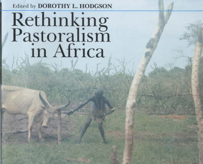Rethinking Pastoralism in Africa: Gender, Culture and the Myth of the Patriarchal Pastoralist (Hardback)