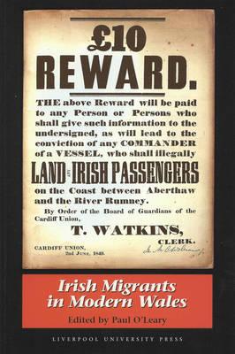 Irish Migrants in Modern Wales (Paperback)