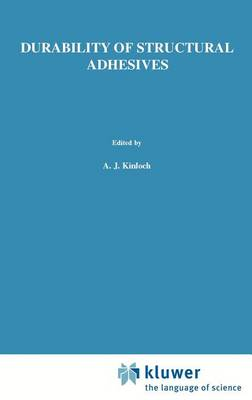 Durability of Structural Adhesives (Hardback)