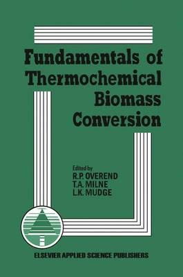 Fundamentals of Thermochemical Biomass Conversion (Hardback)