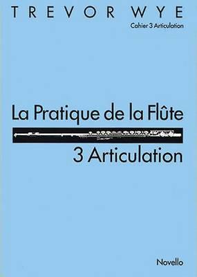 La Pratique De La Flute: 3 Articulation (Paperback)