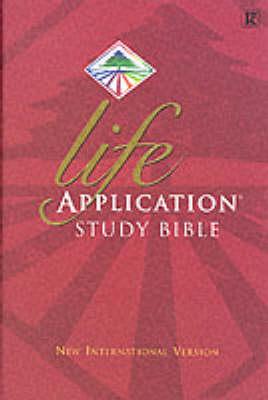 Bible NIV Lasb (Hardback)