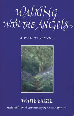 Walking with the Angels: A Path of Service (Paperback)