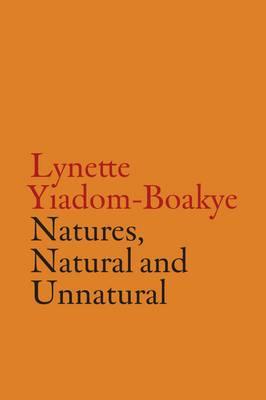 V-A-C Collection: Lynette Yiadom-Boakye (Hardback)