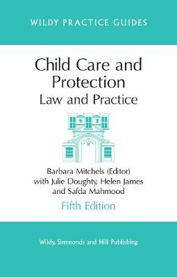 Child Care and Protection: Law and Practice - Wildy Practice Guides (Paperback)