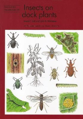 Insects on dock plants - Naturalists' Handbooks Vol. 26 (Paperback)