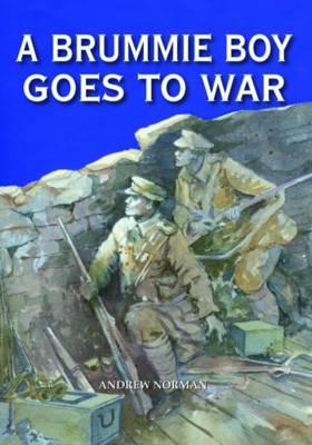 A Brummie Boy Goes to War (Hardback)