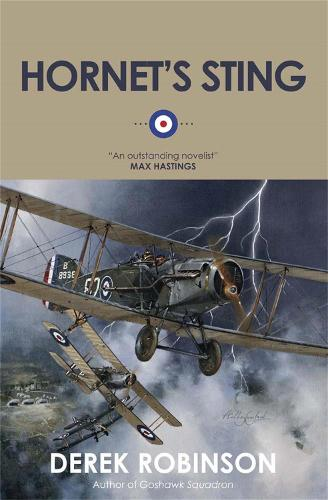 Hornet's Sting (Paperback)